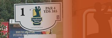 sfc-sponsor-2014